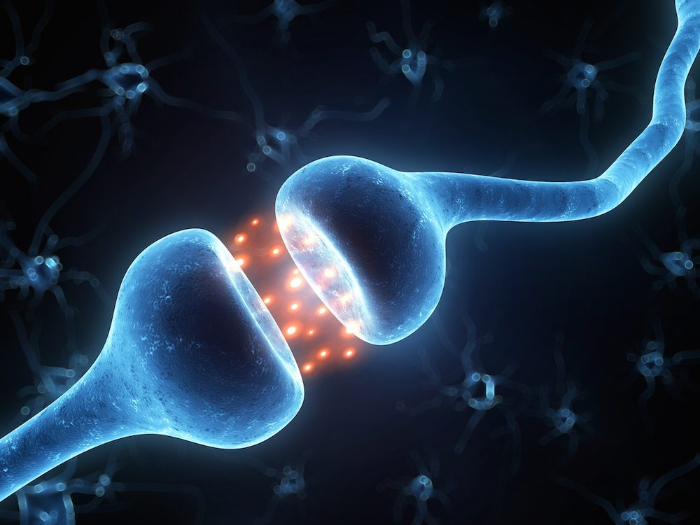 """синапси: Школа по JUMP Math """"Аз мога"""""""